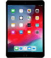 Apple ipad-mini-3-4g-model-a1600-met-ios-12